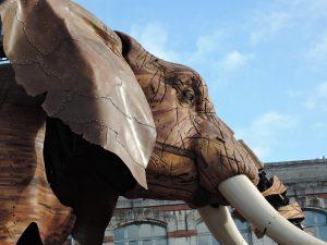 nouveautés séminaires 2020 selectvenue Elephant